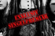 vredehammer_singel